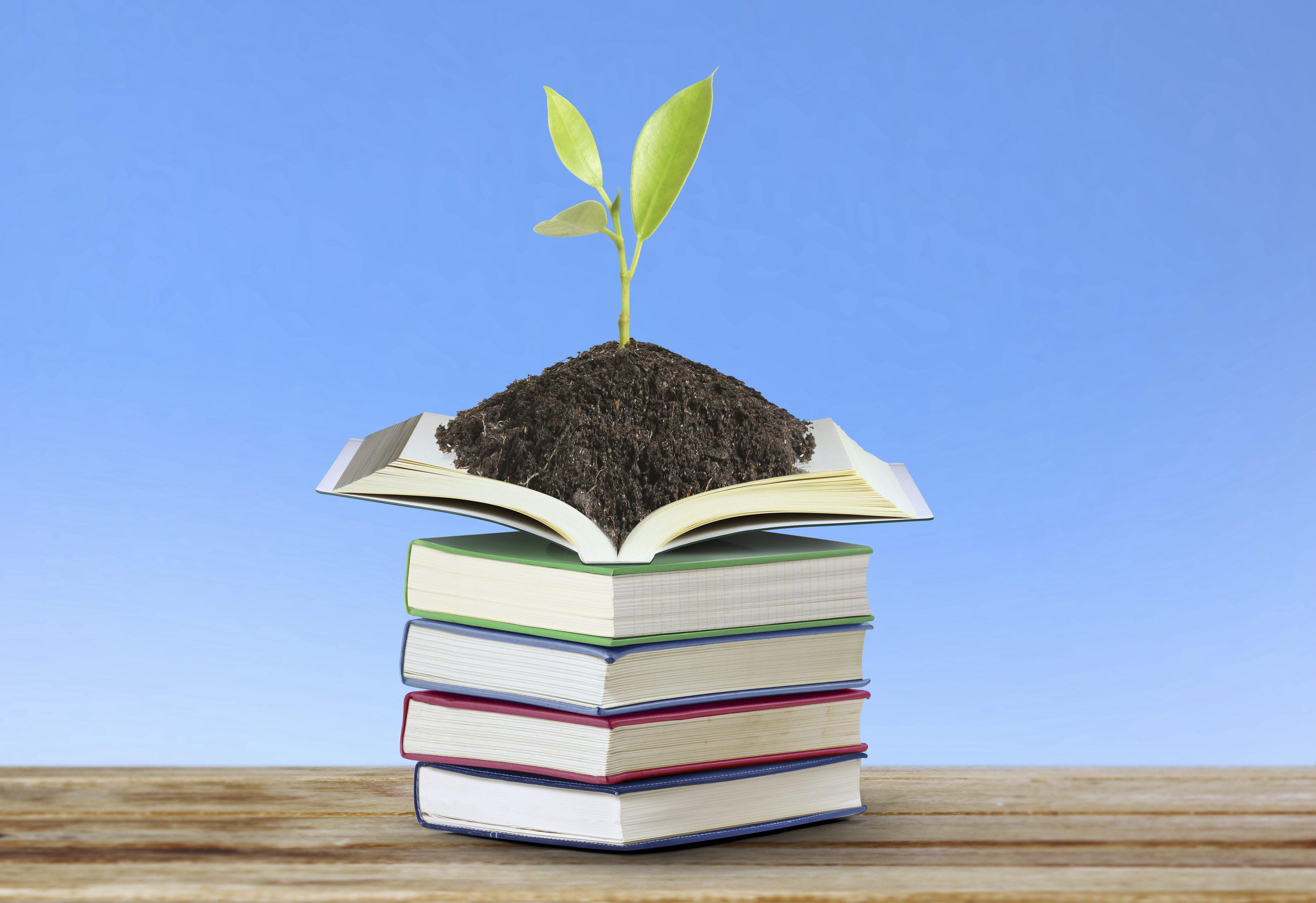 Lending library saint louis city recycles lending library publicscrutiny Choice Image