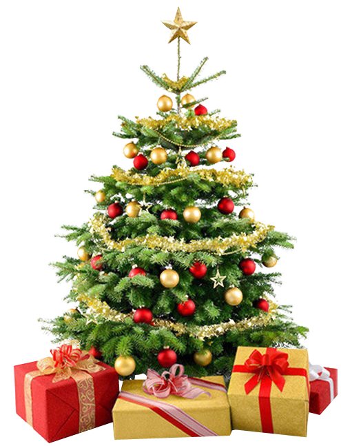 Be EverGREEN this Holiday Season!   Saint Louis City Recycles