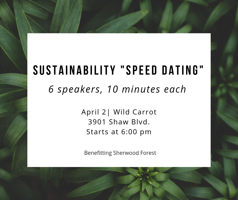 Online Speed Dating in St Louis Missouri United States